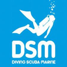 Diving-Scuba-Marine